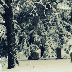 snowycemeterycpwatermark